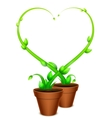 Green Heart Frame vector image