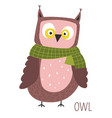 owl with scarf childish cartoon book character vector image vector image