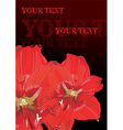 Red Lily Design with Text Space vector image vector image