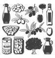 vintage natural olive collection vector image vector image