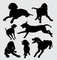 vizsla dog animal silhouette vector image