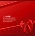 realistic red bow with ribbon vector image