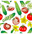 seamless pattern of colored tomatoes and cucumbers vector image