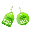 Spring Sale Tags vector image vector image