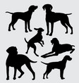 vizsla dog pet mammal animal silhouette vector image vector image