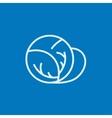 Cabbage line icon vector image vector image