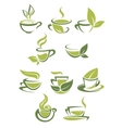 Collection of green or organic tea icons vector image