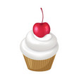 cupcake with whipped cream swirl and cherry on top vector image vector image