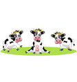 drawing three different cows funny baby vector image vector image