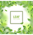 leaf realistic background vector image vector image