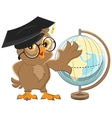 Owl teacher turns Globe vector image vector image