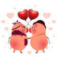 pig couple with balloons heart shape look at each vector image