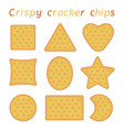 set baked cracker chips different shapes vector image vector image
