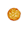 almond cookie vector image vector image