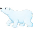 cartoon polar bear isolated on white background vector image