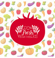 fresh vegetables banner template with organic farm vector image vector image