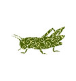 locust grasshopper insect spiral pattern color vector image