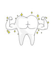 single white and very strong muscle healthy tooth vector image vector image