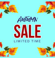 stylish colorful banner with autumn sale vector image vector image