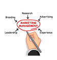 business man writing marketing management vector image vector image