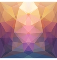Colorful abstract symmetry background vector image vector image
