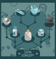 spa color isometric concept icons vector image vector image