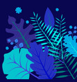 tropical flowers jungle leaves bird paradise vector image vector image