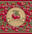 vintage cherry label on seamless pattern vector image
