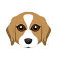 cute beagle dog avatar vector image vector image