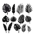 set of black silhouettes of tropical leaves palms vector image