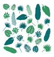 collection of tropical leaves nature elements for vector image vector image