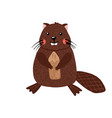 cute hand drawn beaver isolated on white vector image vector image