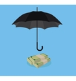 money protection with umbrella cover stack of cash vector image