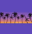 palm coconut trees silhouette at sunset or sunrise vector image vector image
