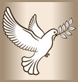 pigeon symbol peace vector image