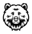 bear head mascot logo black and white vector image vector image