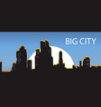 blue banner big city night city illuminated by vector image vector image