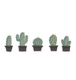 Cute hand drawn cactuse in pots set