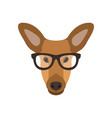 deer female in glasses cute doe vector image vector image