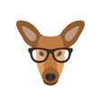 deer female in glasses cute doe vector image