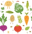 Funny vegetable characters pattern vector image
