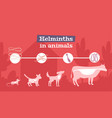 helminths animals flat banner