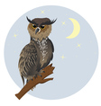Horned Owl on a Branch2 vector image vector image