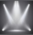 scene illumination transparent effects on dark vector image