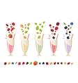 Berry milk shake isolated set vector image