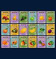 farm market fruits price cards menu vector image