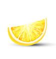 fresh juicy 3d lemon slice closeup vector image