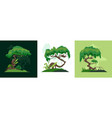 jungle plants design concept vector image