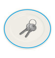 keys on the plate vector image
