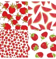 Ripe red raspberry strawberry watermelon Set of vector image